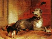 Sir edwin henry landseer,R.A. Lady Blessingham's Dog oil painting